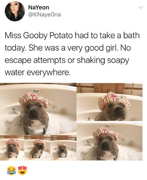 Memes, Girl, and Good: NaYeon  @KNayeOna  Miss Gooby Potato had to take a bath  today. She was a very good girl. No  escape attempts or shaking soapy  water everywhere. 😂😍