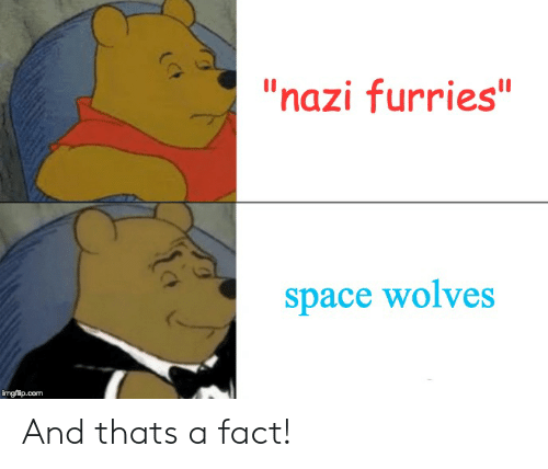 """Space, Wolves, and Com: """"nazi furries""""  space wolves  imgflip.com And thats a fact!"""