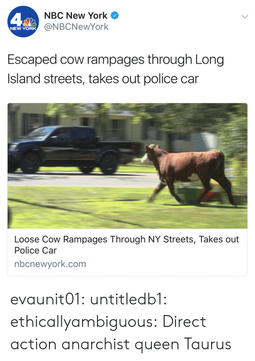 New York, Police, and Streets: NBC New York  @NBCNewYork  NEW YORK  Escaped cow rampages through Long  Island streets, takes out police car  Loose Cow Rampages Through NY Streets, Takes out  Police Car  nbcnewyork.com evaunit01:  untitledb1:   ethicallyambiguous: Direct action anarchist queen   Taurus