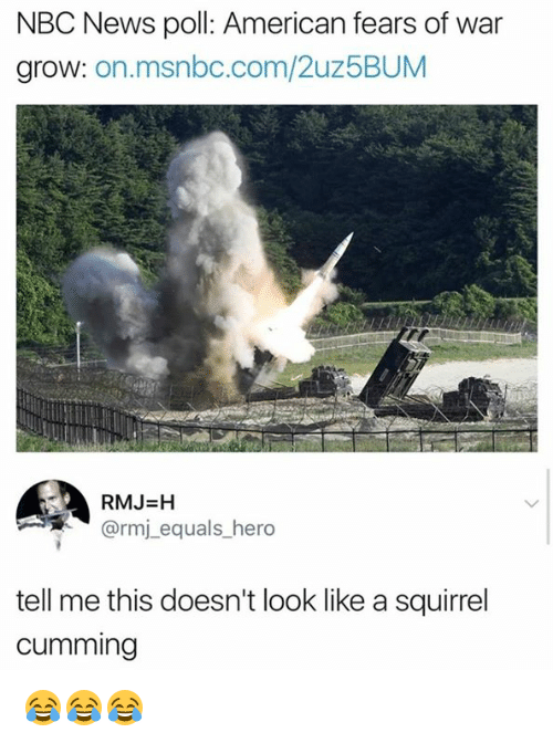 News, American, and Msnbc: NBC News poll: American fears of war  grow: on.msnbc.com/2uz5BUM  RMJ=H  @rmj_equals_hero  tell me this doesn't look like a squirrel  cumming 😂😂😂