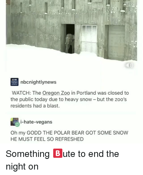 Memes, Bear, and Oregon: nbcnightlynew  WATCH: The Oregon Zoo in Portland was closed to  the public today due to heavy snow - but the zoo's  residents had a blast.  i-hate-vegans  Oh my GODD THE POLAR BEAR GOT SOME SNOW  HE MUST FEEL SO REFRESHED Something 🅱️ute to end the night on