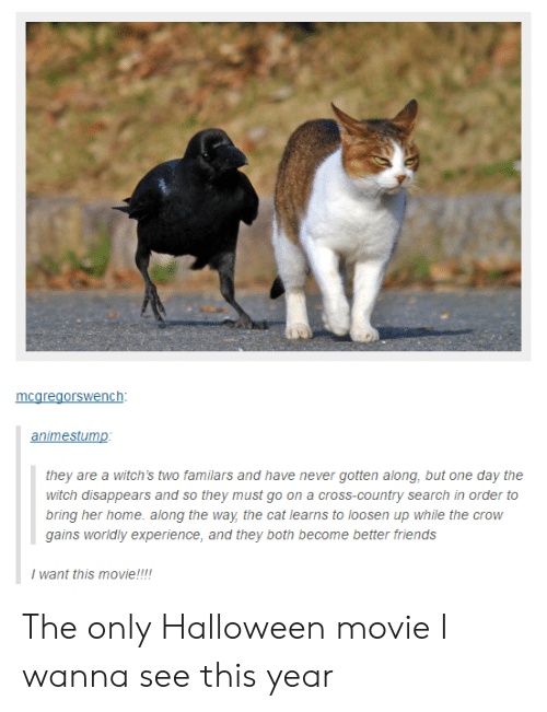 Friends, Halloween, and Cross: nc  animestump  they are a witch's two familars and have never gotten along, but one day the  witch disappears and so they must go on a cross-country search in order to  bring her home. along the way the cat learns to loosen up while the crow  gains worldly experience, and they both become better friends  I want this movie!!! The only Halloween movie I wanna see this year