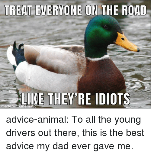 Advice, Dad, and Tumblr: NE ON THE ROAD  LIKE THEY RE IDIOTS  made with memati advice-animal:  To all the young drivers out there, this is the best advice my dad ever gave me.