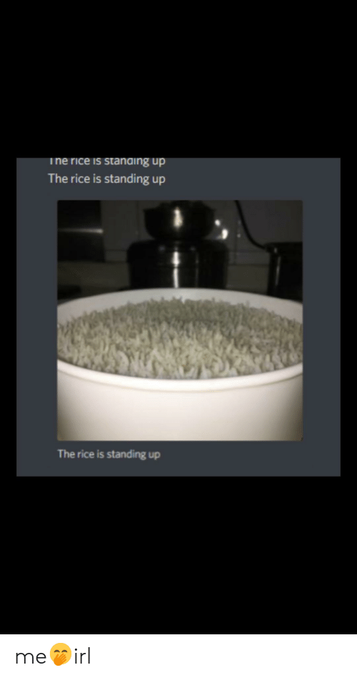 Irl, Rice, and  Standing Up: ne rice is standing up  The rice is standing up  The rice is standing up me🤭irl