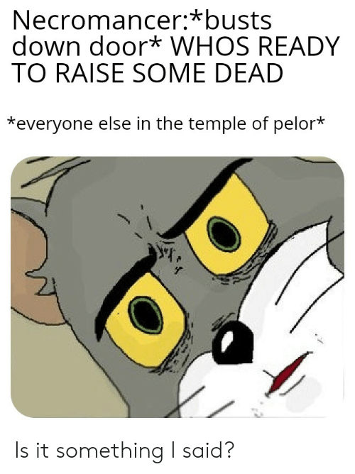 Necromancer*busts Down Door* WHOS READY TO RAISE SOME DEAD