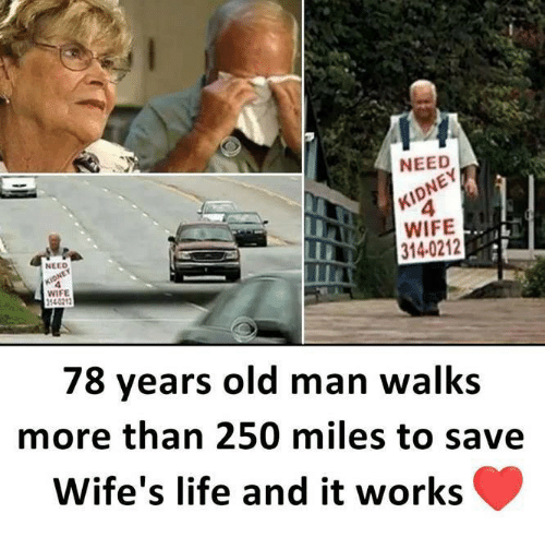 Life, Memes, and Old Man: NEED  4  WIFE  314-0212  NELD  WIFE  140212  78 years old man walks  more than 250 miles to save  Wife's life and it works