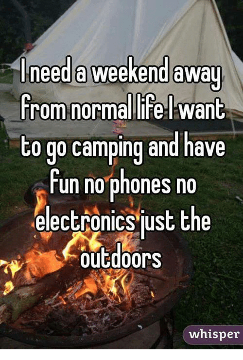 Dank, Phone, and 🤖: need a weekend away  from normalli Want  to go camping and have  fun no phones no  electronics just the  Outdoors  whisper