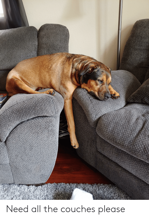 All The, All, and Please: Need all the couches please