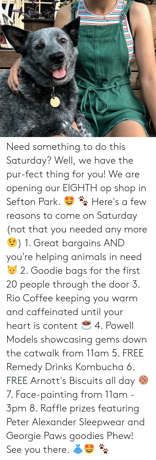 Animals, Memes, and Coffee: Need something to do this Saturday? Well, we have the pur-fect thing for you! We are opening our EIGHTH op shop in Sefton Park. 🤩 🐾  Here's a few reasons to come on Saturday (not that you needed any more 😉)  1. Great bargains AND you're helping animals in need 🐱 2. Goodie bags for the first 20 people through the door 3. Rio Coffee keeping you warm and caffeinated until your heart is content ☕️ 4. Powell Models showcasing gems down the catwalk from 11am  5. FREE Remedy Drinks Kombucha  6. FREE Arnott's Biscuits all day 🍪 7. Face-painting from 11am - 3pm  8. Raffle prizes featuring Peter Alexander Sleepwear and Georgie Paws goodies   Phew! See you there. 👗🤩 🐾
