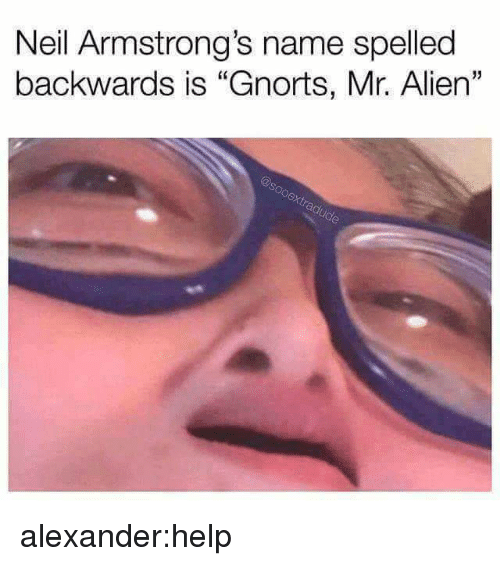 "Target, Tumblr, and Alien: Neil Armstrong's name spelled  backwards is ""Gnorts, Mr. Alien""  15 alexander:help"