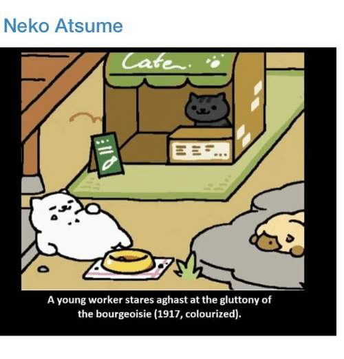 neko atsume a young worker stares aghast at the gluttony 12811557 ✅ 25 best memes about neko atsume yards neko atsume yards memes