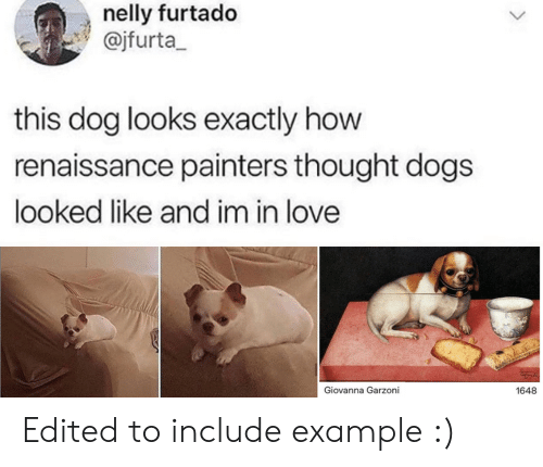 Dogs, Love, and Nelly: nelly furtado  @jfurta  this dog looks exactly how  renaissance painters thought dogs  looked like and im in love  Giovanna Garzoni  1648 Edited to include example :)