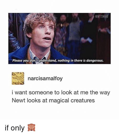 Memes, 🤖, and Creature: NENTISWANO  Please you dont understand, nothing in there is dangerous.  narcisa malfoy  i want someone to look at me the way  Newt looks at magical creatures if only 🙈