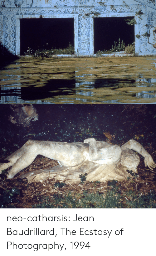 Tumblr, Blog, and Photography: neo-catharsis: Jean Baudrillard,The Ecstasy of Photography, 1994