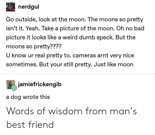 Bad, Best Friend, and Dumb: nerdgul  Go outside, look at the moon. The moons so pretty  isn't it. Yeah. Take a picture of the moon. Oh no bad  picture it looks like a weird dumb speck. But the  moons so pretty???  U know ur real pretty to. cameras arnt very nice  sometimes. But your still pretty. Just like moon  PPP?  jamiefrickengib  a dog wrote thiS Words of wisdom from man's best friend
