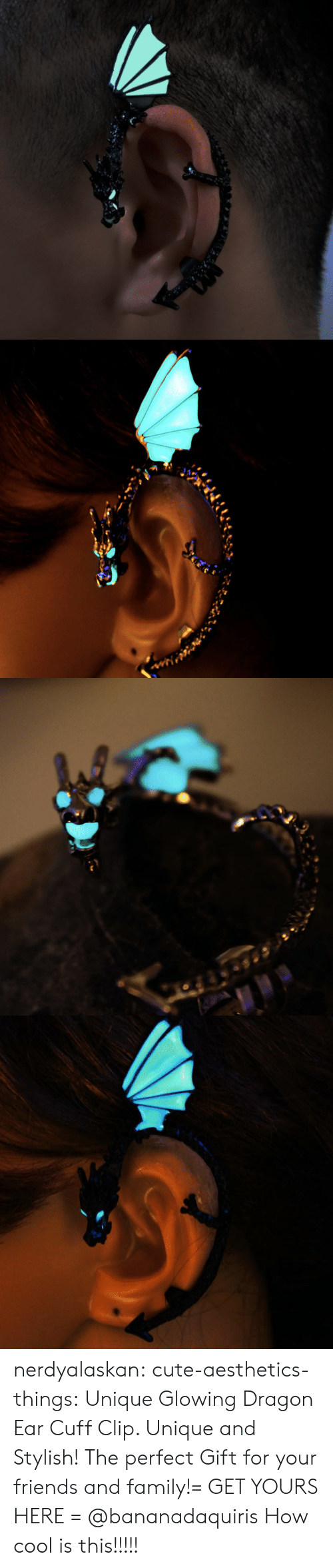 Cute, Family, and Friends: nerdyalaskan:  cute-aesthetics-things:  Unique Glowing Dragon Ear Cuff Clip. Unique and Stylish! The perfect Gift for your friends and family!= GET YOURS HERE =  @bananadaquiris  How cool is this!!!!!
