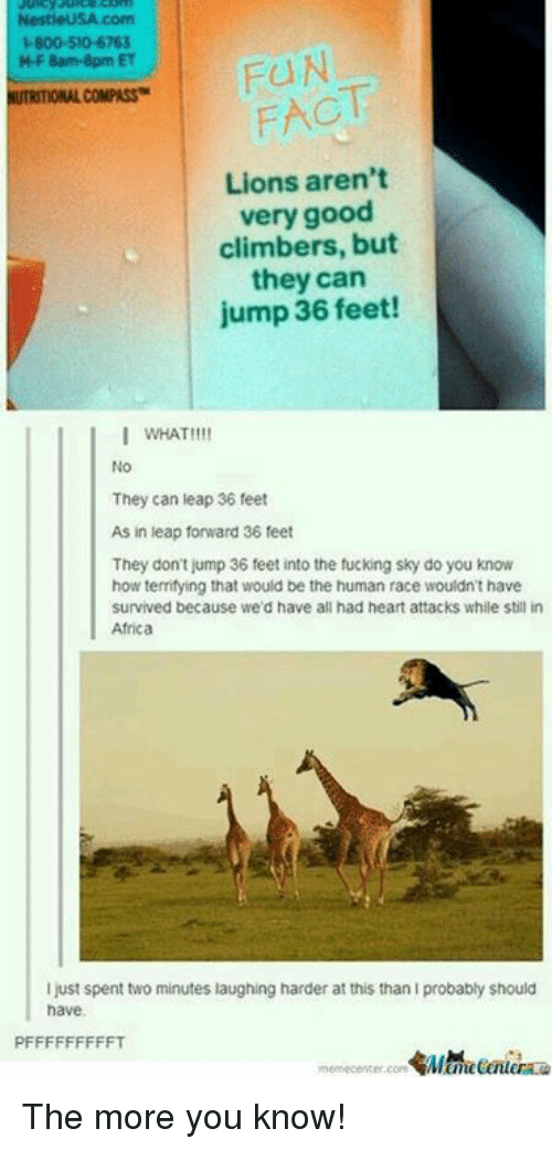Memes, The More You Know, and Compassion: NestieUSA com  H800-50-6763  M-F 8am-8pm ET  FACT  NUTRITIONAL COMPASS  Lions aren't  very good  climbers, but  they can  jump 36 feet!  I WHAT!!  No  They can leap 36 feet  As in leap forward 36 feet  They don't jump 36 feet into the fucking sky do you know  how terrifying that would be the human race wouldn't have  survived because we'd have all had heart attacks while still in  Africa  I just spent two minutes laughing harder at this than Iprobably should  have.  PFFFFFFFFFT The more you know!