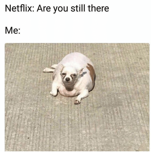 netflix-are-you-still-there-me-27560882.