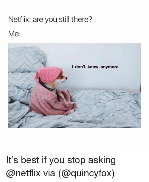 Memes, Netflix, and Best: Netflix: are you still there?  Me:  I don't know anymore It's best if you stop asking @netflix via (@quincyfox)