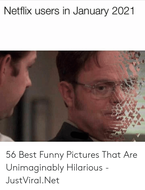 Best Memes Of 2021 Netflix Users in January 2021 56 Best Funny Pictures That Are