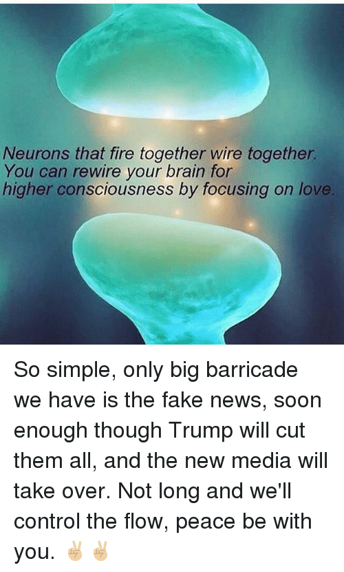 Neurons That Fire Together Wire Together You Can Rewire Your Brain ...