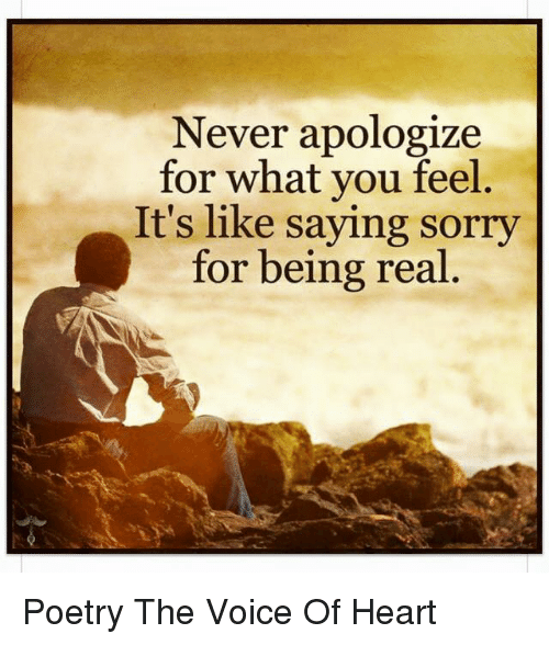 memes sorry and the voice never apologize for what you feel its like
