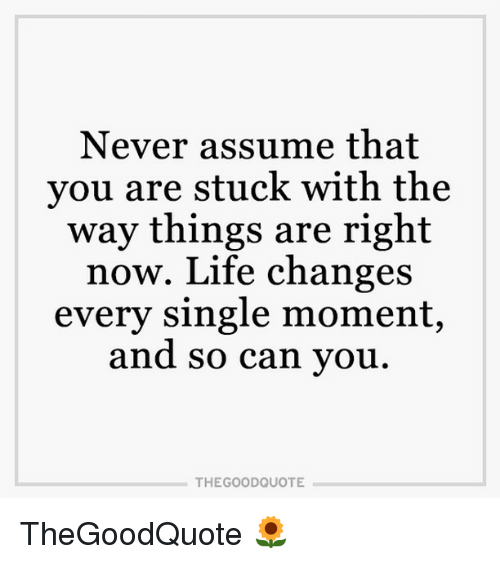Memes, 🤖, And Good Quotes: Never Assume That You Are Stuck With The