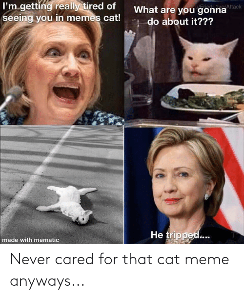 Meme, Conspiracy, and Never: Never cared for that cat meme anyways...