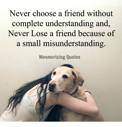 Quotes About Friendship Misunderstanding Captivating Never Choose A Friend Without Complete Understanding And Never