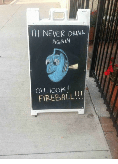 Dank, 🤖, and  Drink: NEVER DRINK.  AGAIN  OH, FIREBALL!