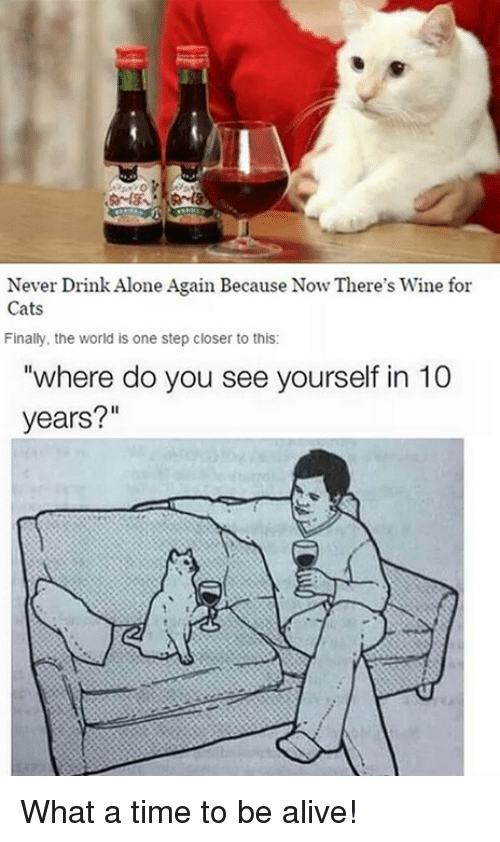 where do you see yourself in 10 years what a time to be alive dank and step never drink alone again because now theres wine for - Where Do You See Yourself In 10 Years Time