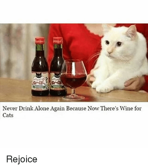 Being Alone, Cats, and Funny: Never Drink Alone Again Because Now There's Wine for  Cats Rejoice