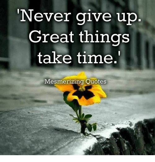 Never Give Up Great Things Take Time Mesmerizing Quotes Meme On MEME Delectable Quotes Never Give Up