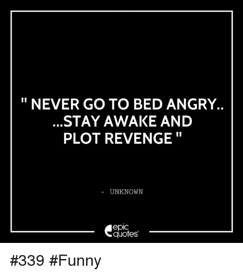 Funny, Revenge, and Quotes: NEVER GO TO BED ANGRY.  STAY AWAKE AND  PLOT REVENGE  UNKNOWN  epIC  quotes #339 #Funny