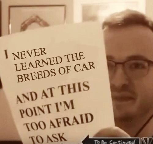 Never, Ask, and Car: NEVER  LEARNED THE  BREEDS OF CAR  AND AT THIS  POINT I'M  TOO AFRAID  TO ASK  To Be Continueo