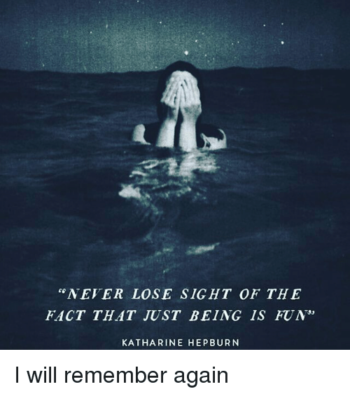Never Lose Sight Of The Fact That Just Being Is Fun Katharine