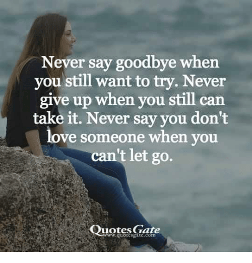 Never Say Goodbye When You Still Want To Try Never Give Up When You