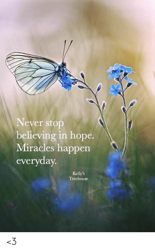Memes, Hope, and Miracles: Never stop  believing in hope.  Miracles happen  everyday  Kelly's  Trechouse <3
