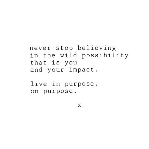 Live, Wild, and Never: never stop believing  in the wild possibility  that is you  and your impact  live in purpose  on purpose