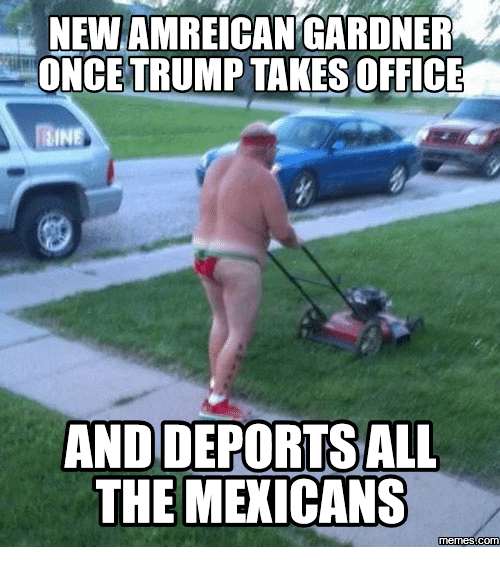 new amreican gardner once trump takes office irine and deportsall 16086531 ✅ 25 best memes about mexican mowing lawns mexican mowing,Lawn Memes