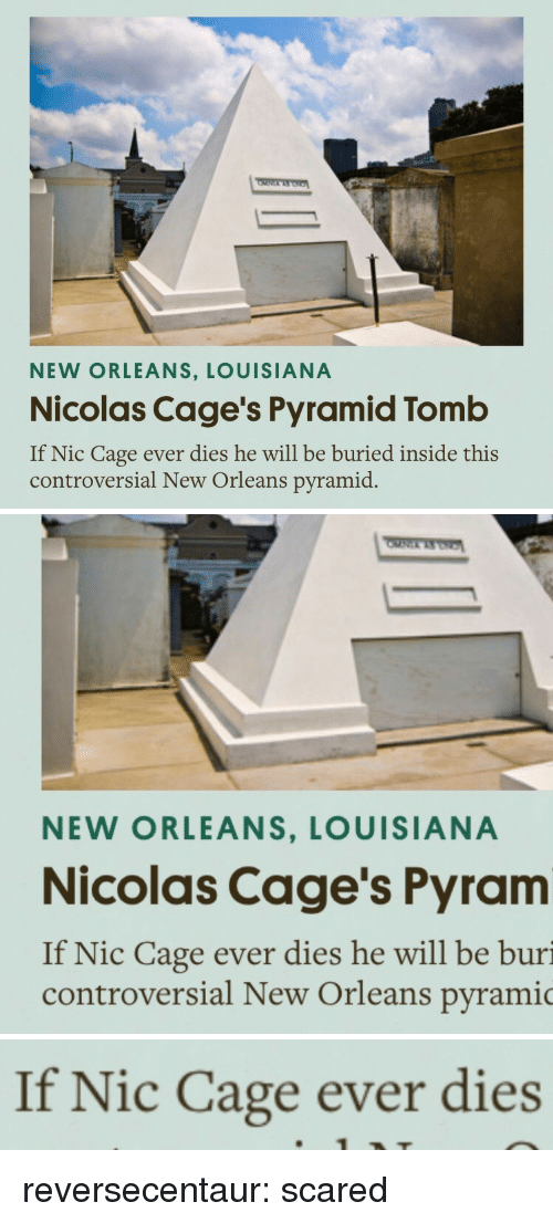 Tumblr, Blog, and Http: NEW ORLEANS, LOUISIANA  Nicolas Cage's Pyramid Tomb  If Nic Cage ever dies he will be buried inside this  controversial New Orleans pyramid.   NEW ORLEANS, LOUISIANA  Nicolas Cage's Pyram  If Nic Cage ever dies he will be buri  controversial New Orleans pyramic   If Nic Cage ever dies reversecentaur: scared