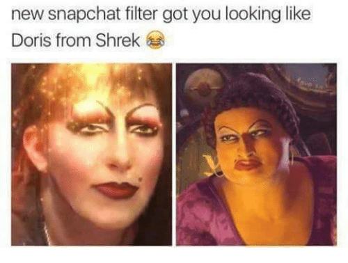Funny Memes For Snapchat : New snapchat filter got you looking like doris from shrek funny