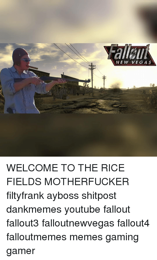 new vega s welcome to the rice fields motherfucker filtyfrank 11647507 ✅ 25 best memes about welcome to the rice fields welcome to,Meme Magic Lamp