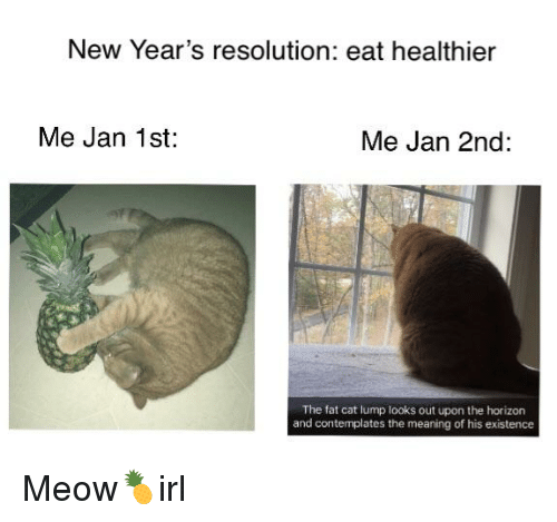 Meaning, Fat, and Cat IRL: New Year's resolution: eat healthier  Me Jan 1st  Me Jan 2nd:  The fat cat lump looks out upon the horizon  and contemplates the meaning of his existence