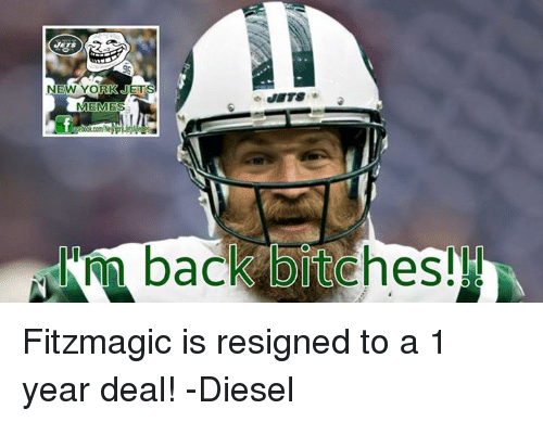 Bitch, Meme, and Memes: NEW YORK JETS  MEMES  back bitches! Fitzmagic is resigned to a 1 year deal!  -Diesel