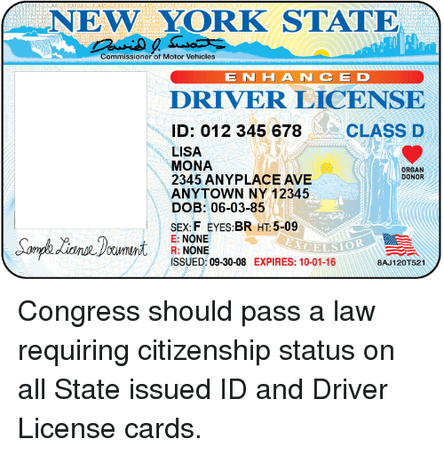 Organ D Vehicles 06-03-85 Commissioner H 012 Nce N York Lisa Motor Ave 12345 345 10 Class 8aj A Id Expires 09-30-08 State Issued 10-01-16 E License 2345 None R Driver Mona 5-09 Of Ht Donor Br Anyplace Ny Anytown New 678 Dob Smphlenrd F Sex Tl Eyes
