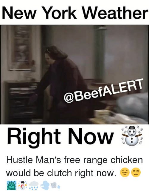 new york weather alert beef right now hustle mans free 14217990 ✅ 25 best memes about new york weather new york weather memes,Memes Nyc