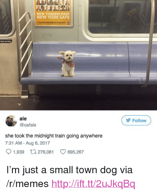 """Lean, Memes, and New York: NEW YORKERS KEEP  NEW YORK SAFE  lean on door  ale  @oafale  У Follow  she took the midnight train going anywhere  7:31 AM - Aug 6, 2017  1,939  276,081  695,267 <p>I'm just a small town dog via /r/memes <a href=""""http://ift.tt/2uJkqBq"""">http://ift.tt/2uJkqBq</a></p>"""