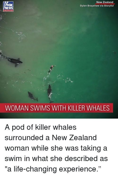 "Killer Whales, Life, and Memes: New Zealand  Dylan Brayshaw via Storyful  OX  channel  WOMAN SWIMS WITH KILLER WHALES A pod of killer whales surrounded a New Zealand woman while she was taking a swim in what she described as ""a life-changing experience."""