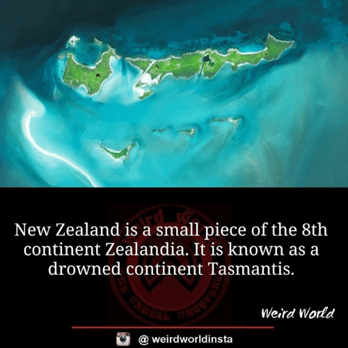Memes, Weird, and New Zealand: New Zealand is a small piece of the 8th  continent Zealandia. It is known as a  drowned continent Tasmantis.  Weird World  @ weirdworldinsta